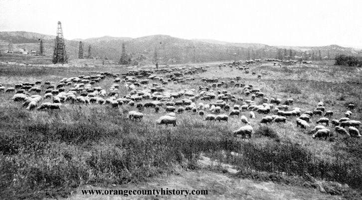 bastanchury ranch fullerton